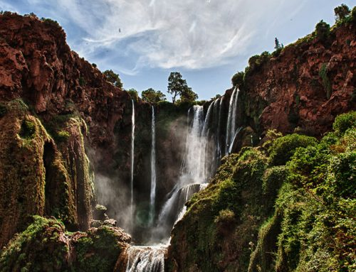 Ouzoud Waterfalls day tour from Marrakech
